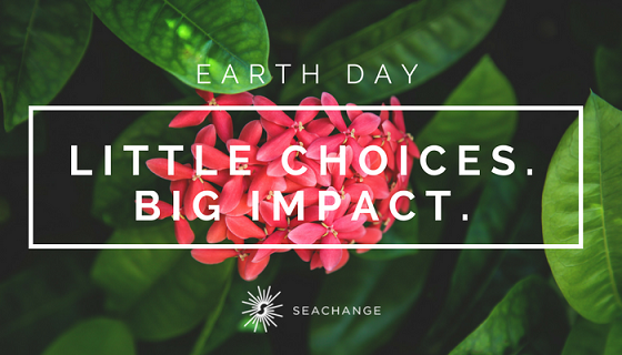 Earth Day Little Choices Big Impact