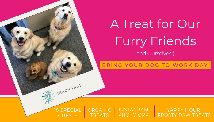 A Treat for Our Furry Friends